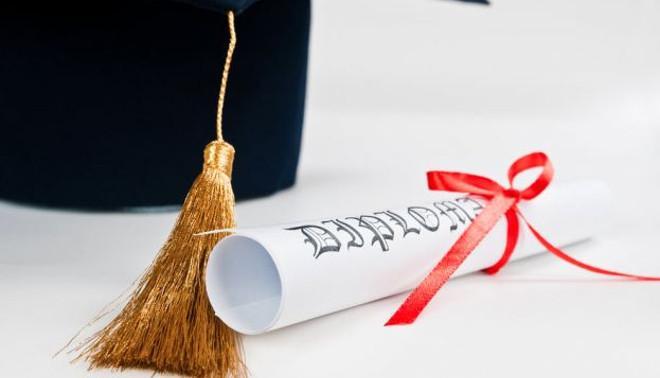 almalaurea diploma liceo istituto tecnico professionale
