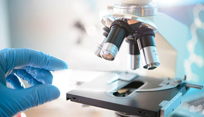 test ingresso biologia e biotecnolologie