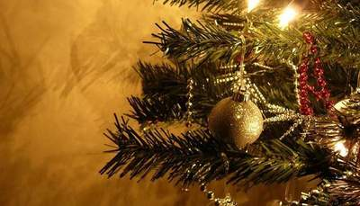 Albero Vs Presepe: conto alla rovescia verso Natale