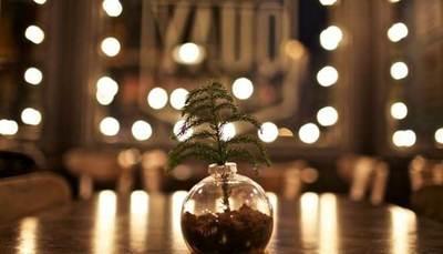 Natale: 7 decorazioni fantasiose