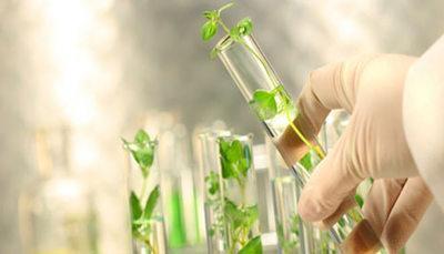 Seconda prova biotecnologie ambientali maturità 2015
