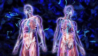 10 curiosità scientifiche e sul corpo umano che ancora non sai