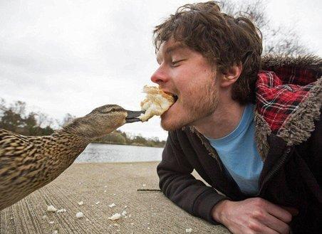 L'esperimento di Allan: 20 selfie completamente folli con gli animali!