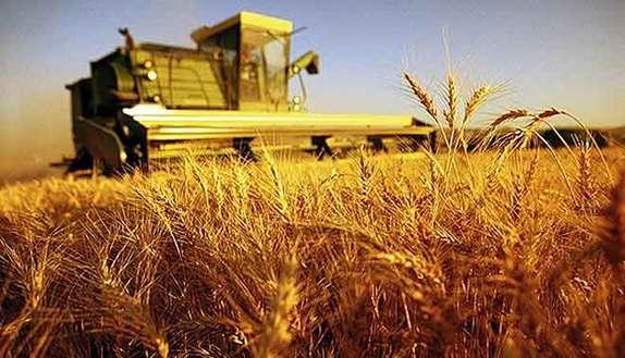 Seconda prova maturità 2015 servizi agricoltura e sviluppo rurale
