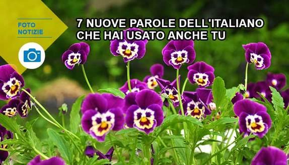 Come #petaloso: 7 nuove parole dell'italiano