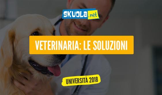 Soluzioni test veterinaria 2017: le risposte ufficiali del Miur