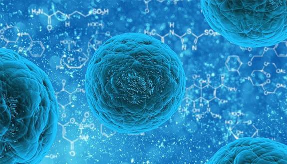 Test ingresso Biologia e Biotecnologie 2019: i tipi di test Cisia e Tolc, date e università