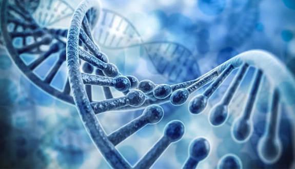 Biologia e Biotecnologie 2018, i corsi ad accesso libero in Italia