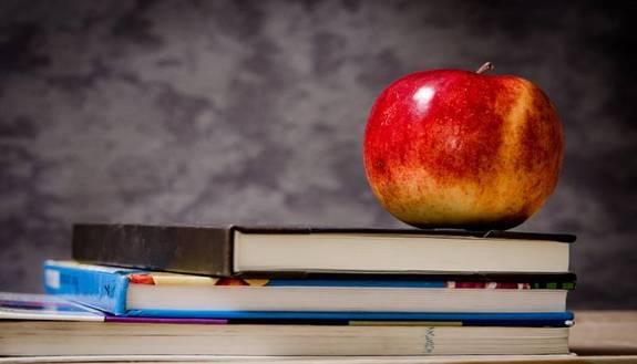 Ritorno a scuola, dove si rientra il 25 gennaio
