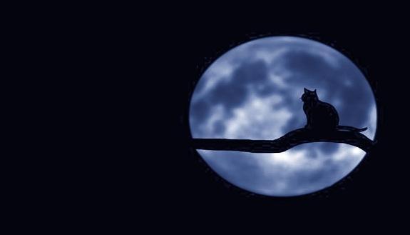 Halloween, il 31 ottobre 2020 ci sarà la luna blu: cos'è, quando e come vederla